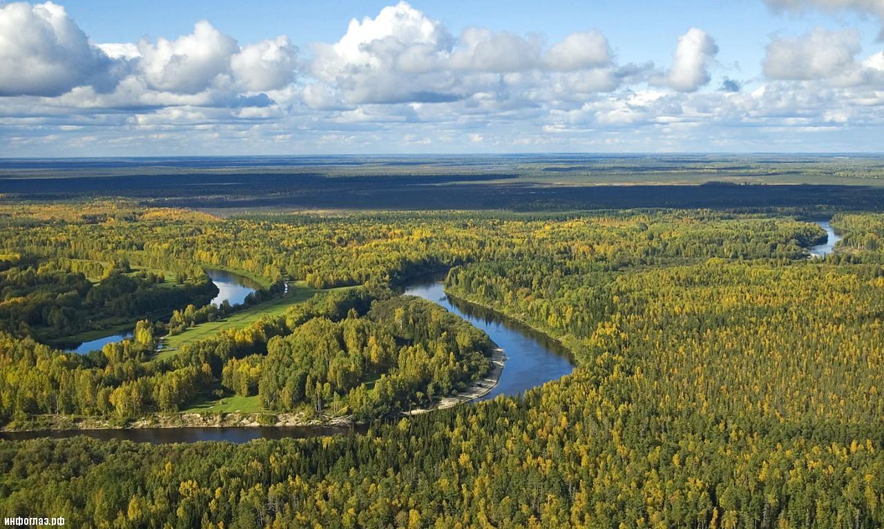 Юг Западной Сибири